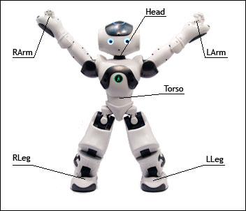 Ask robot